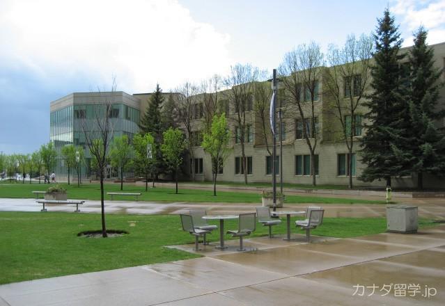 カナダ・カレッジ