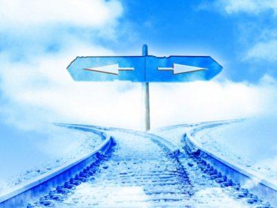 留学の選択