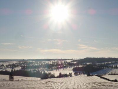 カナダの畑